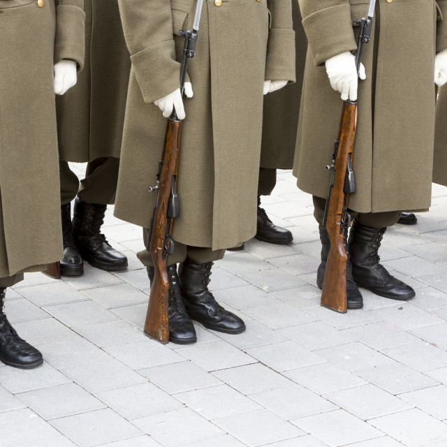 """""""Bulgarian troopers in formation"""" stock image"""