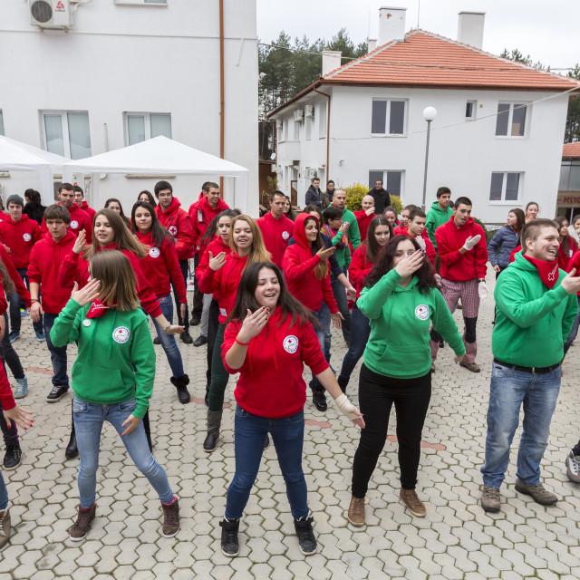 """Bulgarian Red Cross Youth (BRCY) voluntary organization"" stock image"