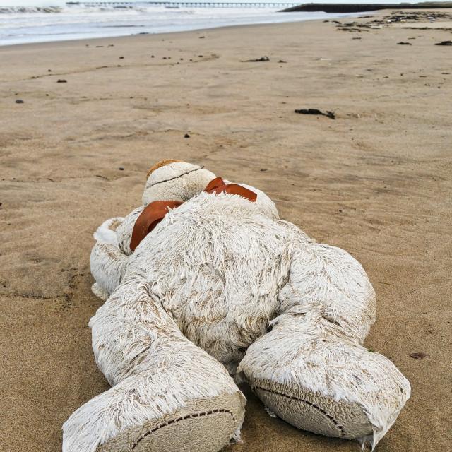 """Paddington on the beach"" stock image"
