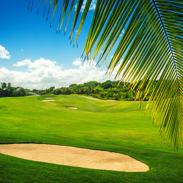 """""""Beautiful landscape of a golf court with palm trees in Punta Can"""" stock image"""