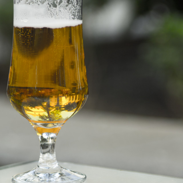 """Glass of beer"" stock image"