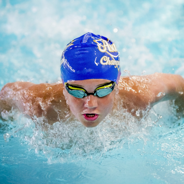 """Swimmer Butterfly"" stock image"
