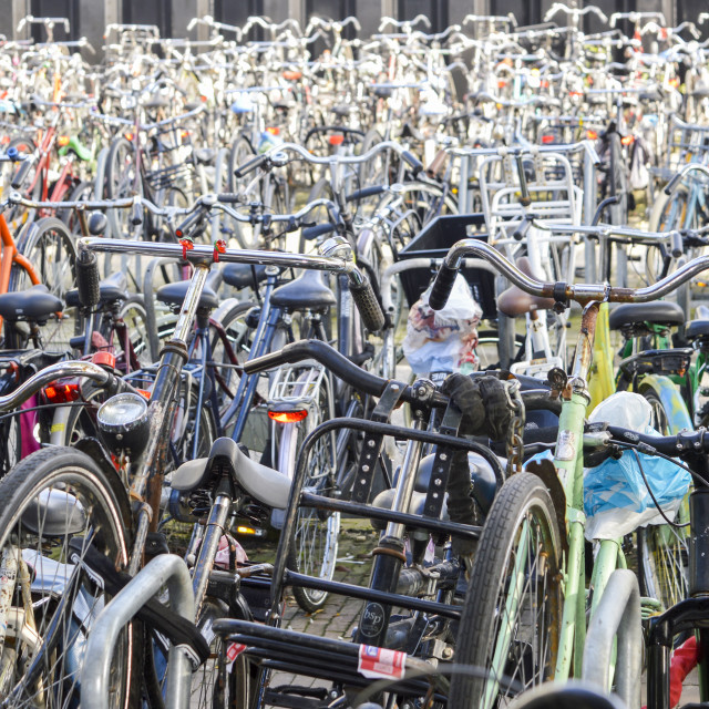 """Bicycle parking organized chaos in Amsterdam, Netherlands"" stock image"