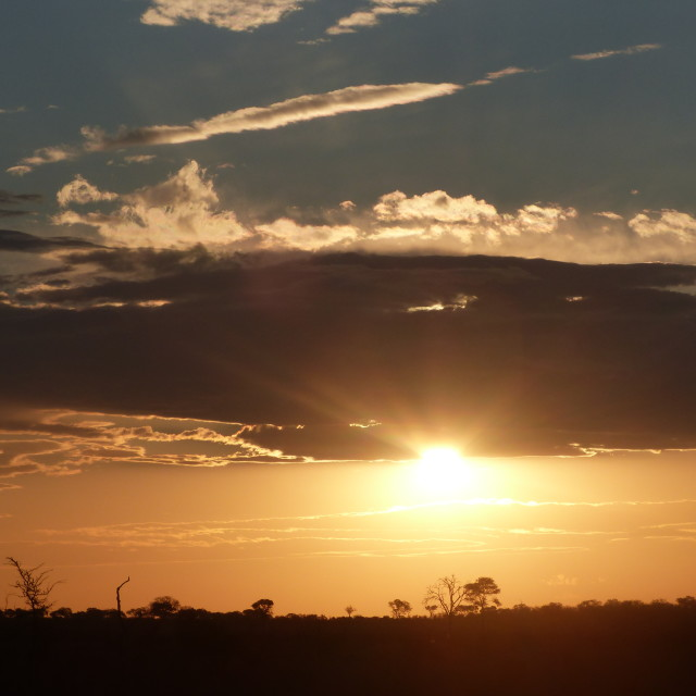 """""""African Sunset"""" stock image"""