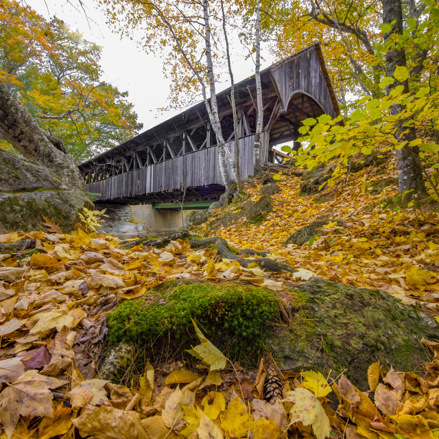 """Old covered bridge"" stock image"