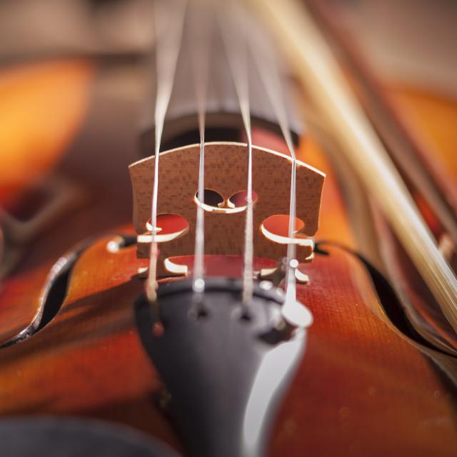 """Violin musical instrument"" stock image"