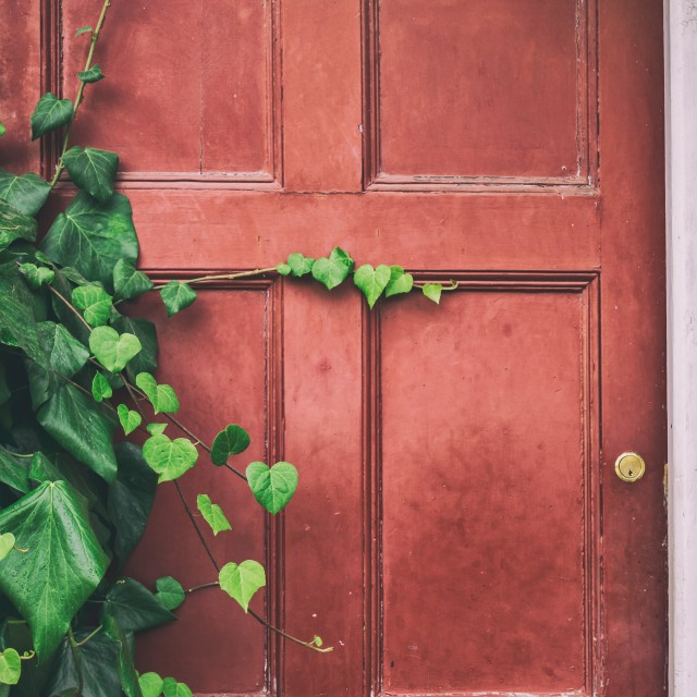 """Old doors on the abandoned house"" stock image"