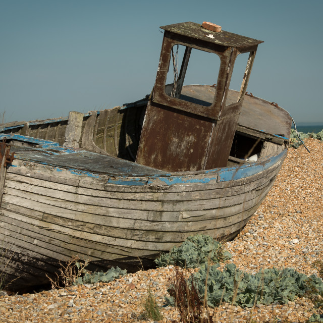 """Dungeness Shingle Beach"" stock image"