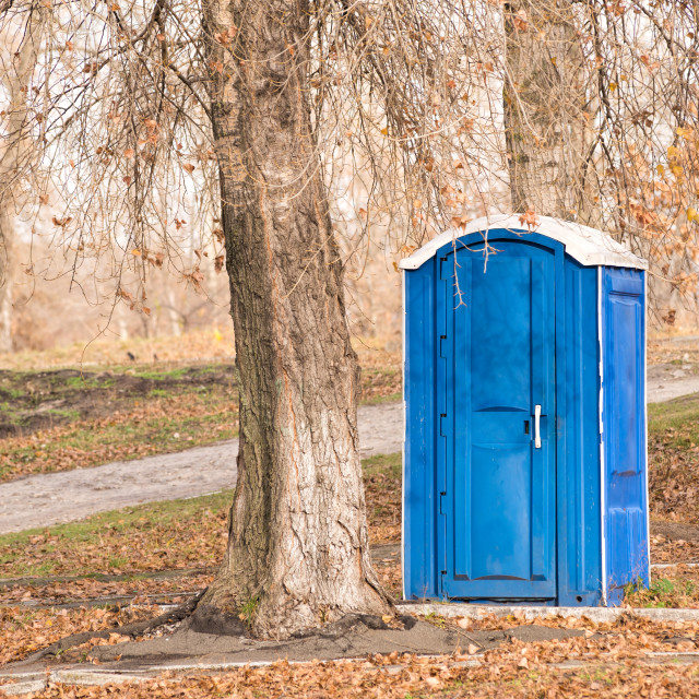 """""""Blue Chemical Toilet in the Park"""" stock image"""