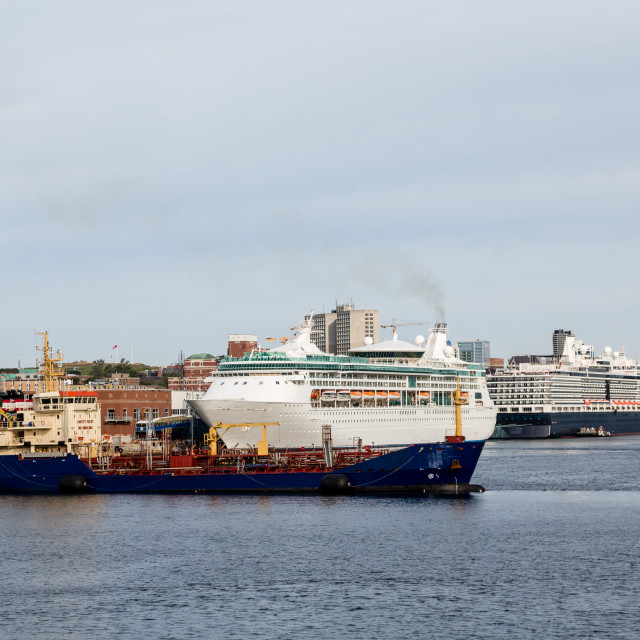 """""""Cruise Ships and Freighter in Halifax"""" stock image"""