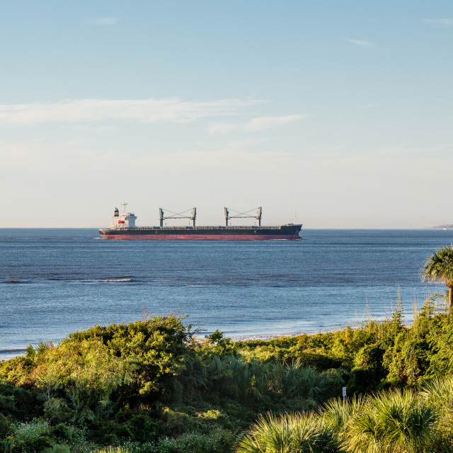 """""""Empty Freighter off Tropical Coast"""" stock image"""