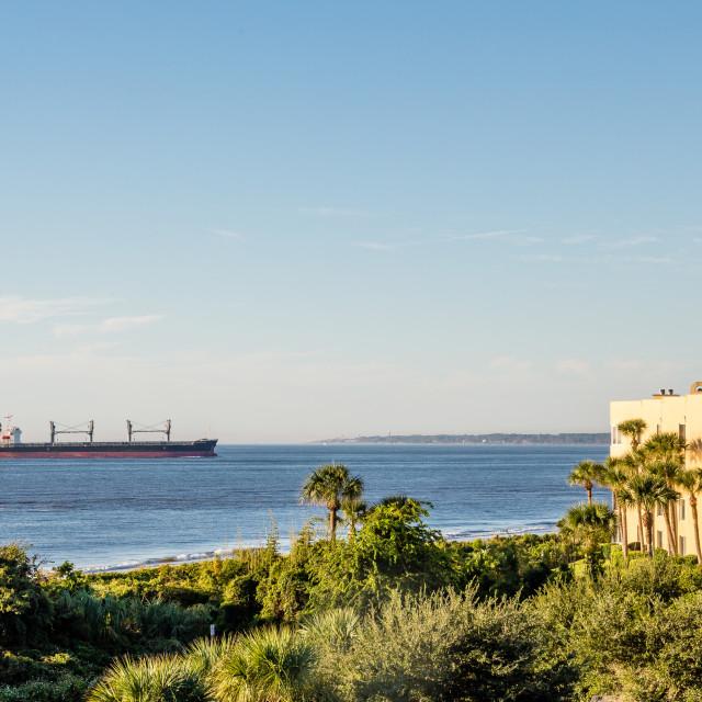 """Freighter Near Tropical Condos"" stock image"