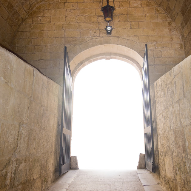 """""""Vaulted old medieval stone hall"""" stock image"""