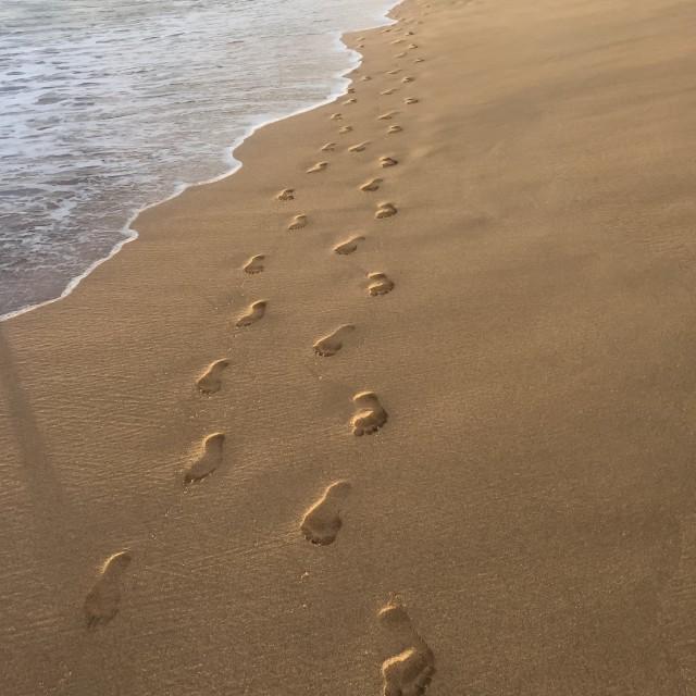 """Walk together"" stock image"