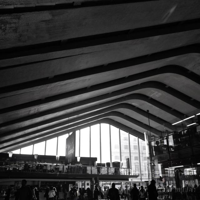 """Termini Station"" stock image"