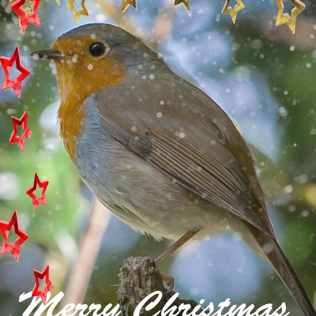 """Christmas Card Design 2015"" stock image"