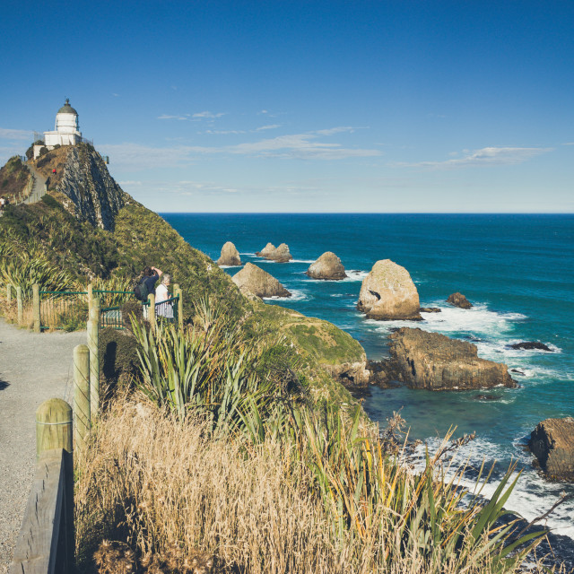"""Nugget Point (New Zealand)"" stock image"