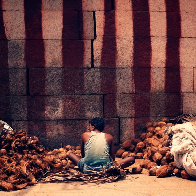 """Indian coconut seller"" stock image"