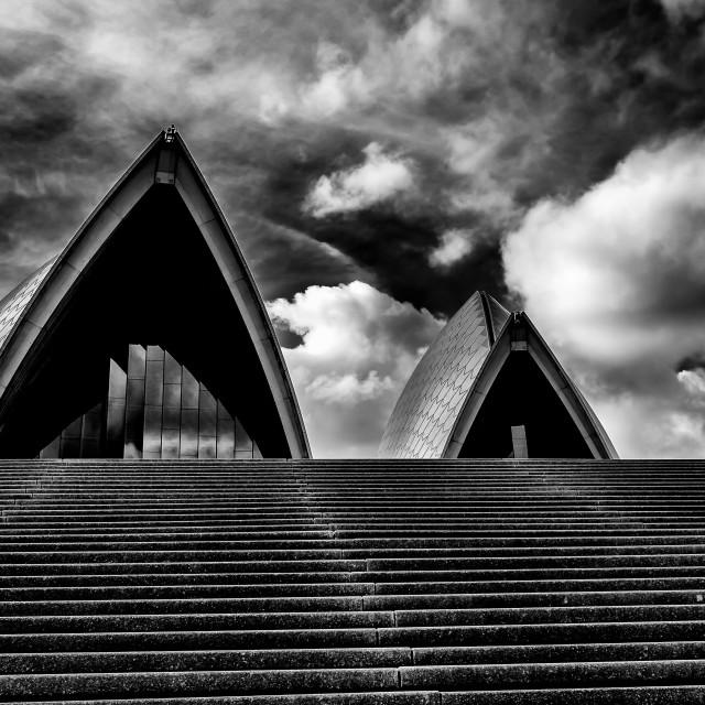 """""""Sydney Opera House Sails"""" stock image"""