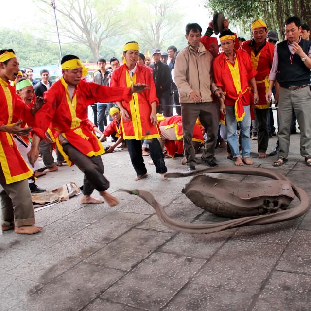 """Firecracker by land, unique folk games in Vietnam"" stock image"