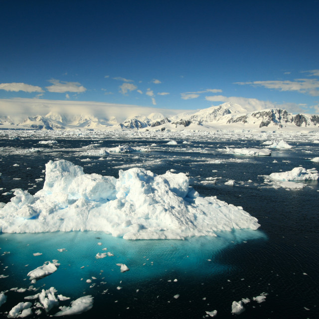 """Icebergs along the Antarctic peninsula"" stock image"