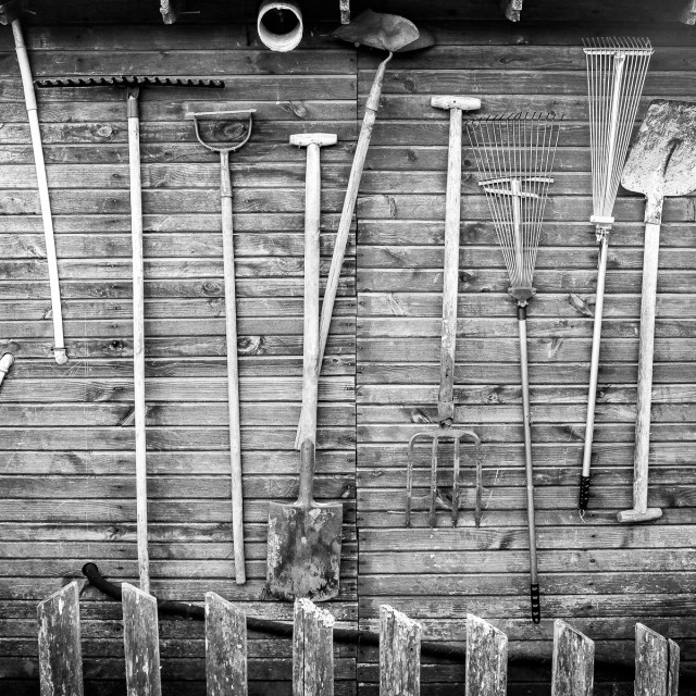 """Old gardener's tools"" stock image"