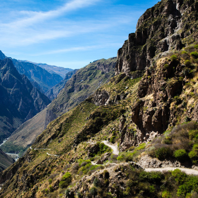 """Colca Canyon"" stock image"