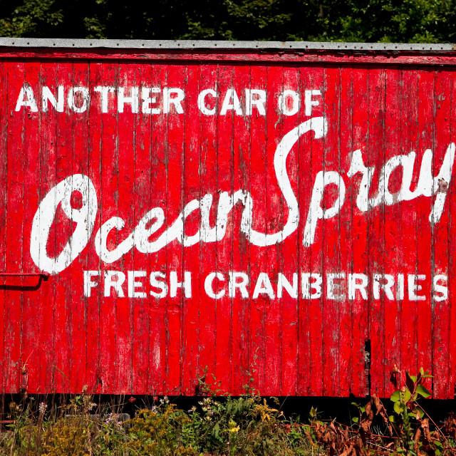 """Ocean Spray fresh cranberries"" stock image"