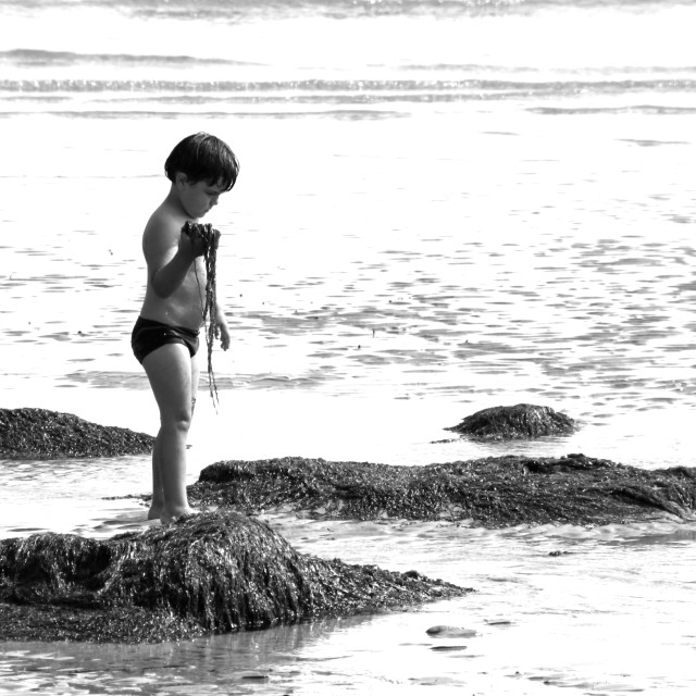 """Childhood - Seaweed and Me"" stock image"