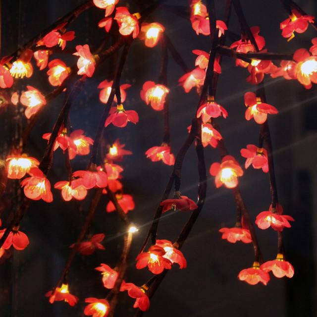 """Fairy Flower Lights."" stock image"