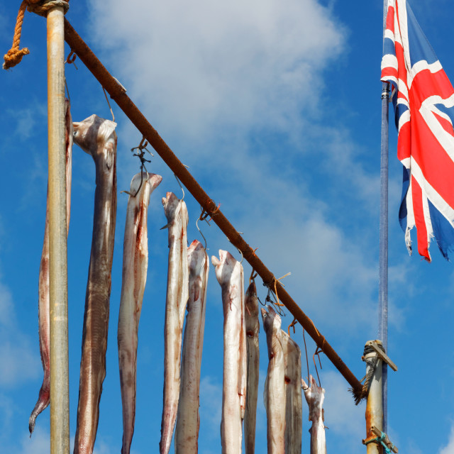 """British Fishing Industry"" stock image"