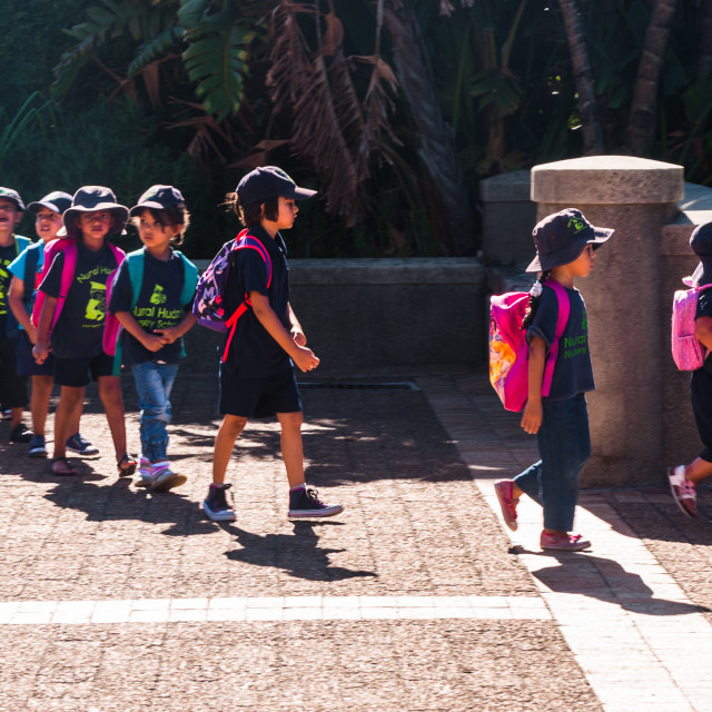 """School children on a school outing"" stock image"