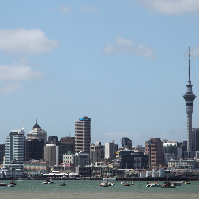 """""""Auckland skyline panorama"""" stock image"""