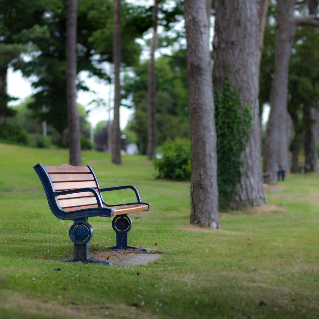 """Remembrance bench"" stock image"