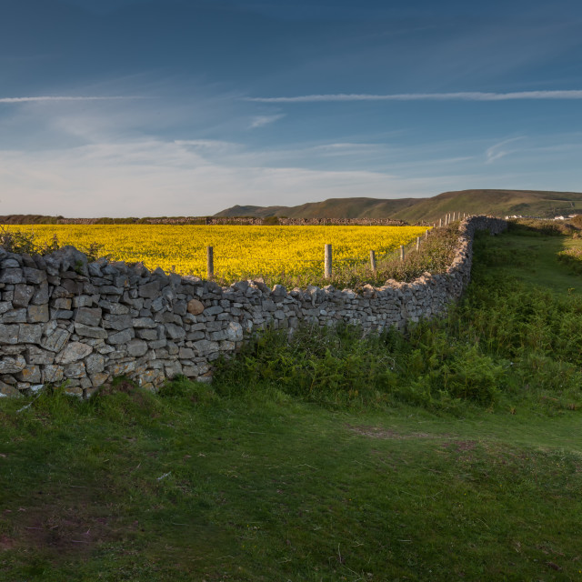 """Dry stone wall"" stock image"