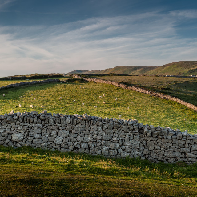 """Dry stone wall at Rhossili"" stock image"