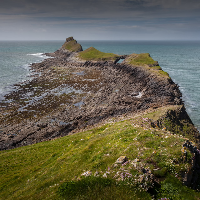"""""""Worm's head on the Gower peninsula"""" stock image"""