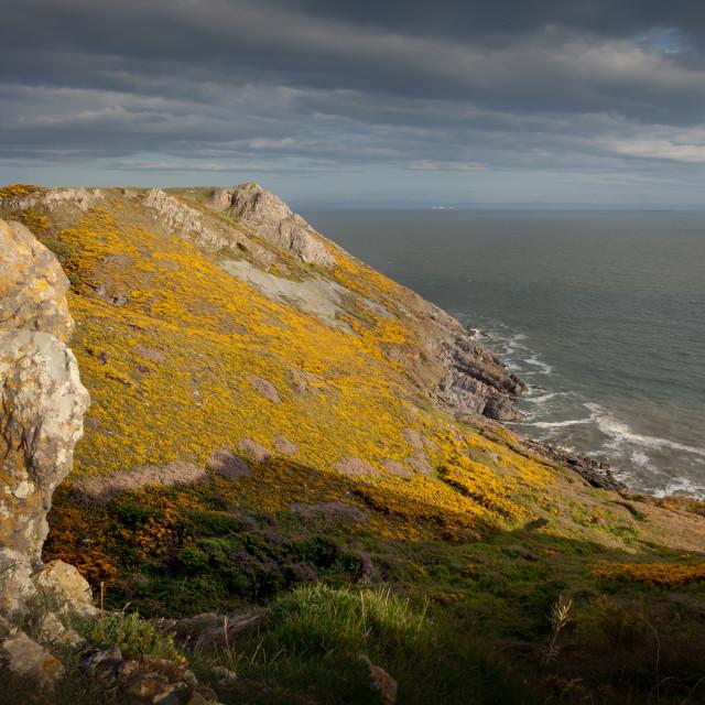 """Pennard cliffs"" stock image"