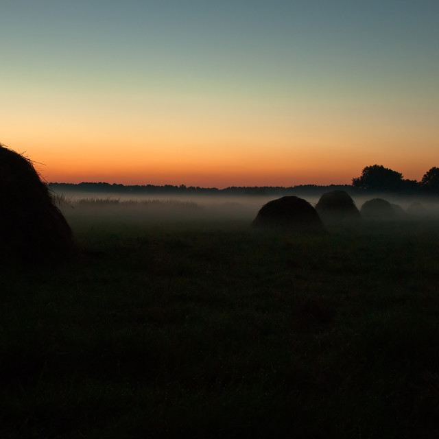 """""""Dense evening fog over the meadow and haystacks just after suns"""" stock image"""