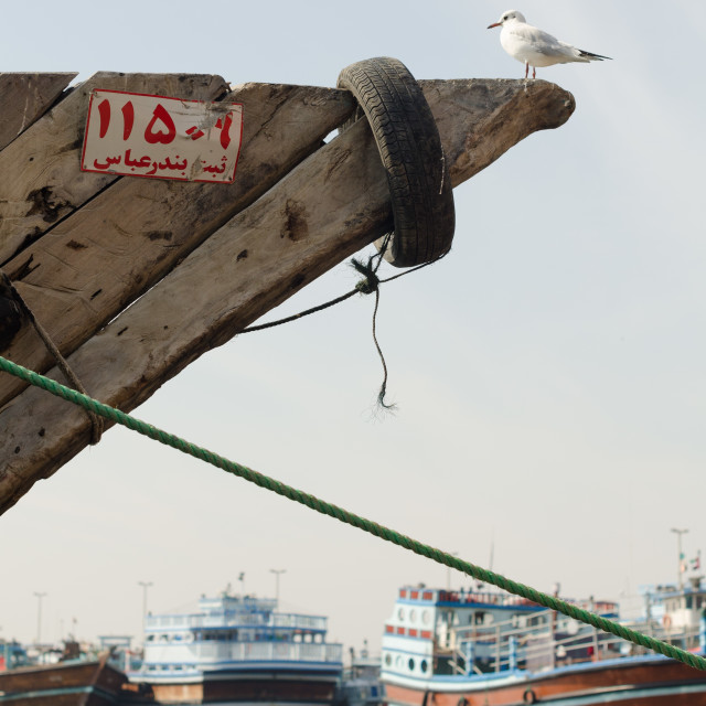 """""""Traditional dhow boat moored up at dubai creek dubai with a seagull perched on the bow"""" stock image"""