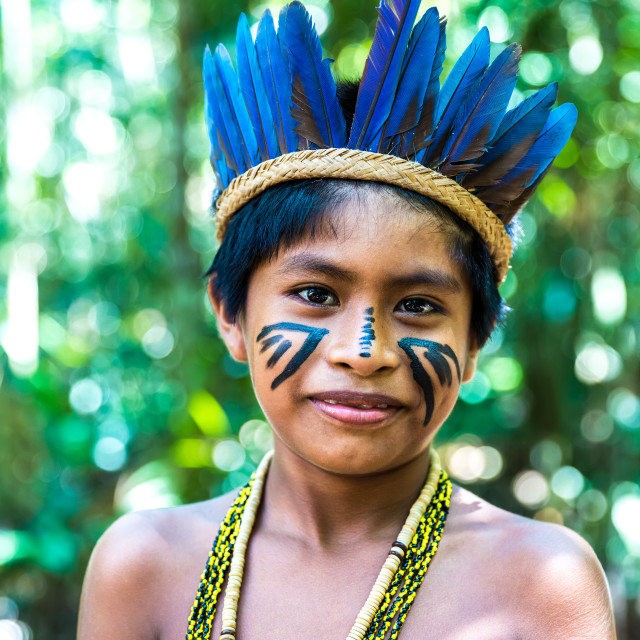 """Native Brazilian boy at an indigenous tribe in the Amazon"" stock image"