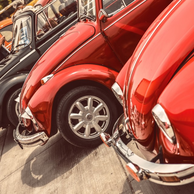 """VW Beetles"" stock image"