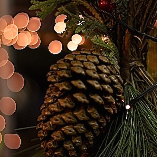 """Christmas lights pine cone"" stock image"