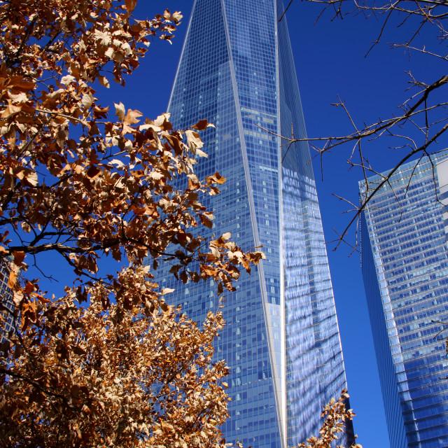 """World Trade Centre"" stock image"