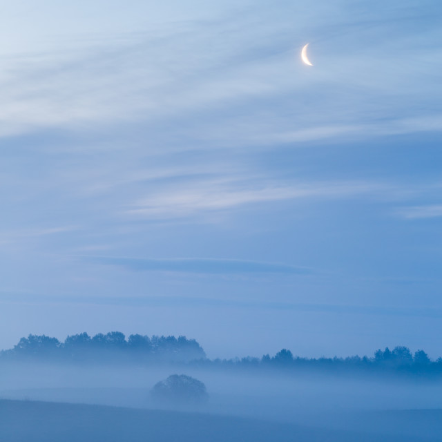 """Foggy morning II"" stock image"