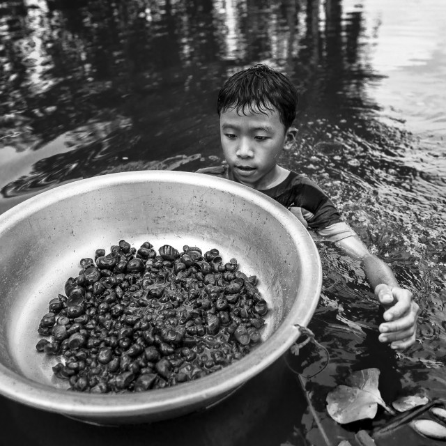 """The kid catching snails on river"" stock image"