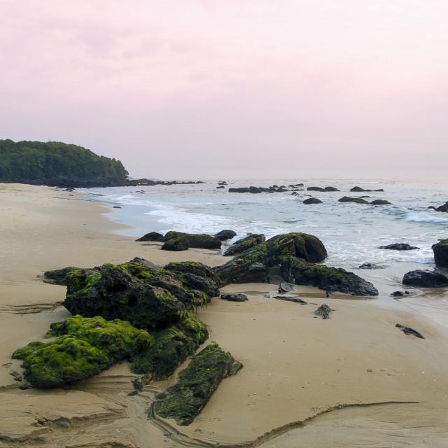 """""""Beach in Viet Nam"""" stock image"""