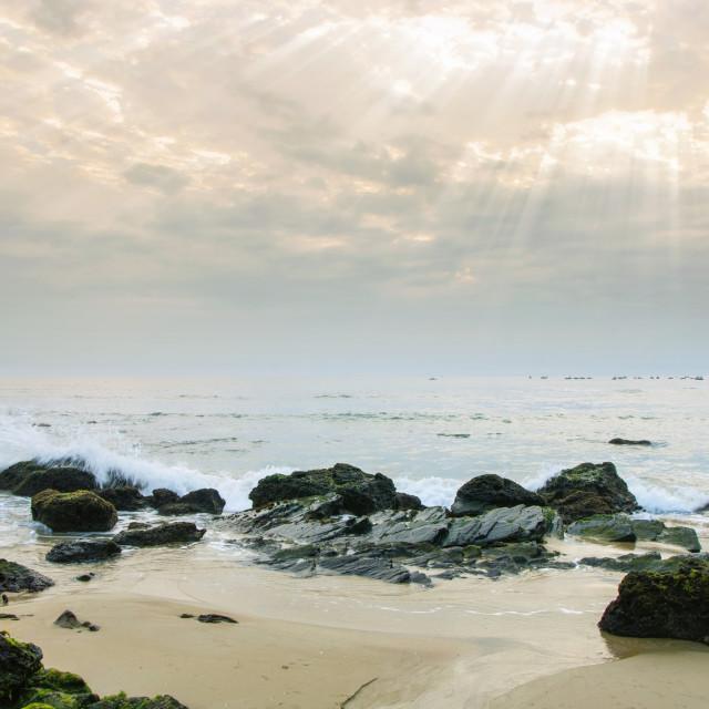 """Rays on beach"" stock image"