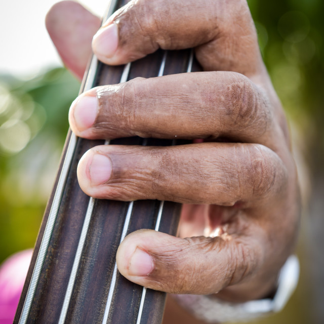 """Fingers on the Bass"" stock image"