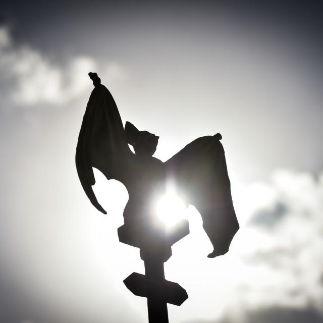 """Bat"" stock image"